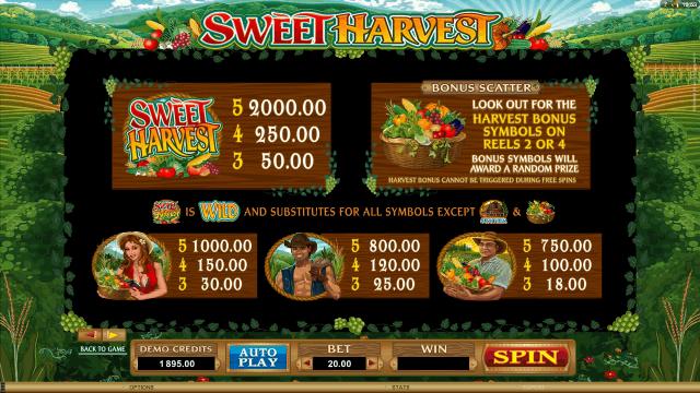 Sweet Harvest 7