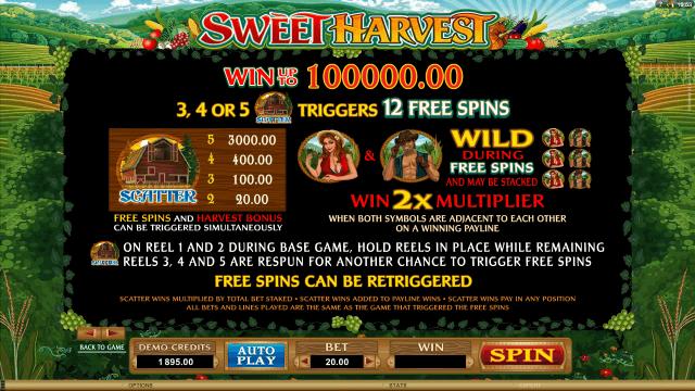Sweet Harvest 6