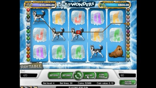 Icy Wonders 7