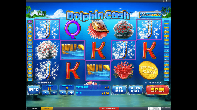 Dolphin Cash 10
