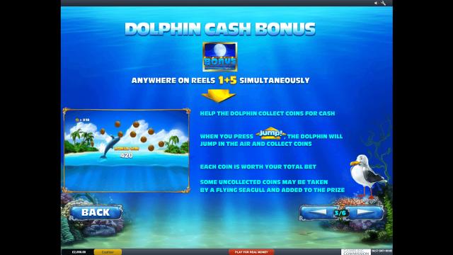 Dolphin Cash 3