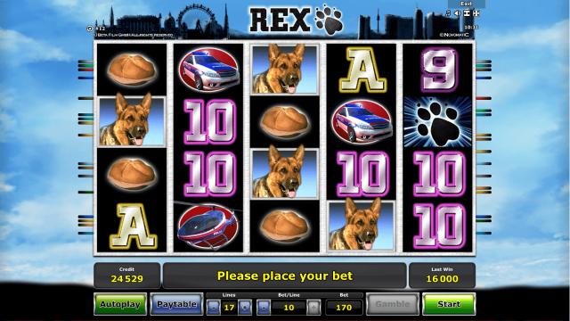 Rex 7