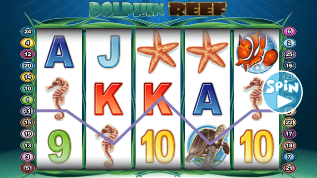Dolphin Reef 9