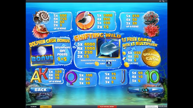 Dolphin Cash 1